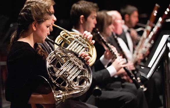 orchestral instrument performance  bmus