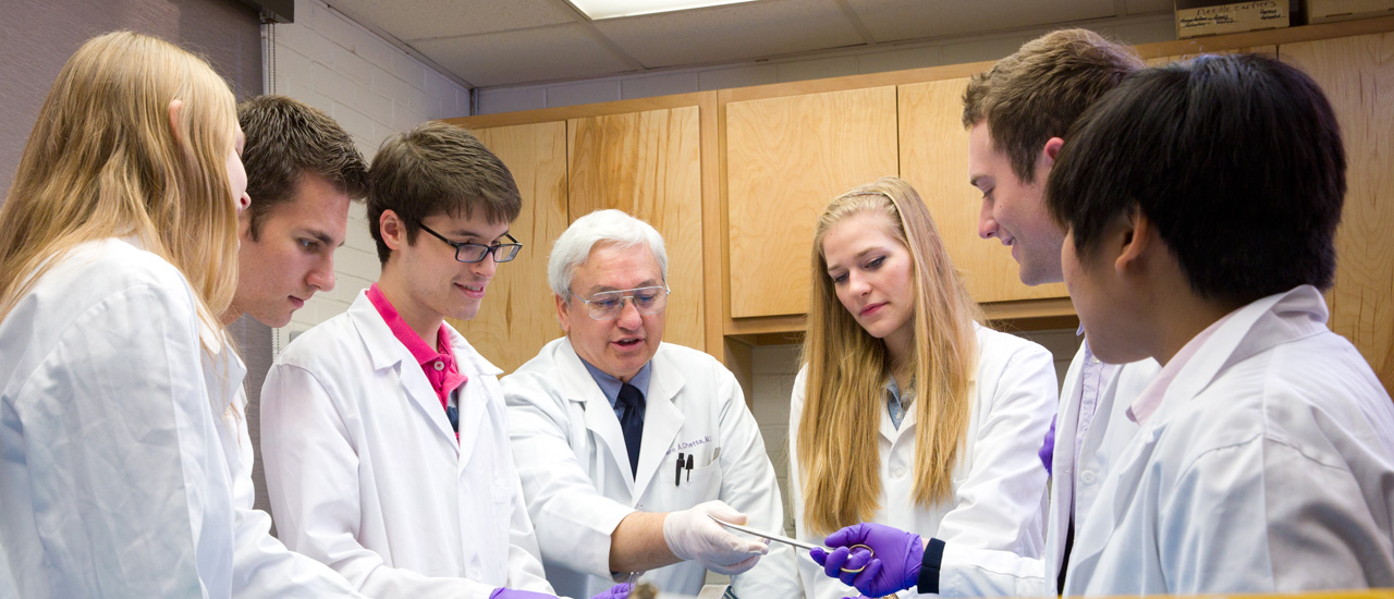 How hard is it to get into JHU pre-med? How about other undergraduate majors?